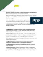 Gramática tradicional - análise sintáctica