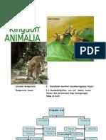 Kingdom Animalia-SMA Klas X