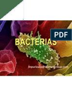 Bacterias[1]