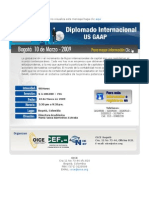 Diplomado Us Gaap Bogota 10 de Marzo 2009