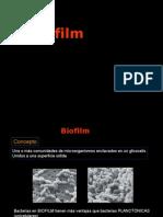 Biofilm Nive II