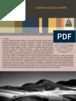 MAPEI Brochure