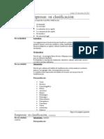 Empresas su clasificación