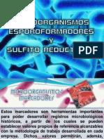 Esporoformadores y Sulfito-reductores