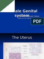 F G S uterus (lect 18-11)