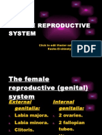 FEMALE REPRODUCTIVE SYSTEM._uterus (lect.18-11)..pptx