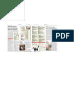 Artigo Empreendedorismo Folha de São Paulo 03