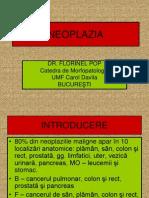 Neopazia