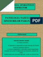 Patologia Nasului Si a Sinusurilor Paranazale