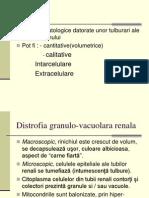 distrofii (2)