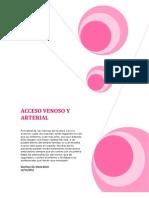 Introducción venas informe (Autoguardado)