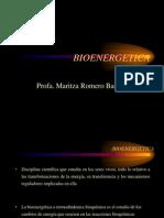 BIOENERGETICA (1)