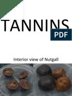 Tannins & Lipids