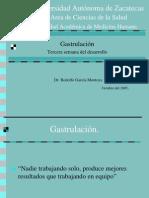 Gastrulaci%C3%B3n GM
