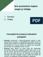 C9,10 Inflatia Si Somajul