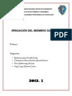 Irrigación del Miembro Superior