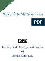 Sarmin's Presentation