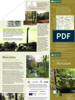 Blairadam Forest Walks