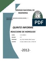 INFORME05_HIDROLISIS