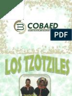 culturatzotzil-091127214233-phpapp02