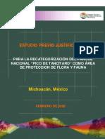 EPJ Para Recategorizacion Del Pico de Tancitaro