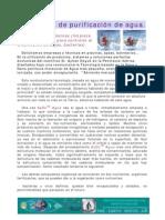 AYDO AGUA_TECNOLOGÍA DE PURIFICACIÓN DE AGUA EN PISCINAS