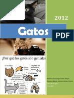 Revista de Gatos1 (Autoguardado)1hvisftra
