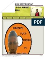 Pagina de Evidencias