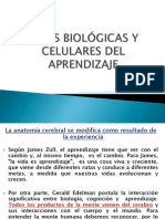 Bases biológicas y celulares del aprendizaje (1)