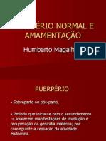 puerprio-110628095444-phpapp02