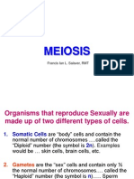 Lecture on Meiosis