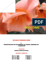 Presentation on Gladiolus Research