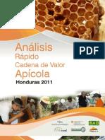 Analisis Rapido CV Apicola Honduras