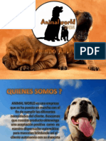 Presentacion Animal World