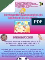 Portafolio Desarrollo Psicomotor(Nuevo)