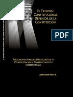 El Tribunal Constitucional Defensor de La Constitucion - Bolivia 2007