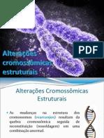 Alterações cromossômicas estruturais