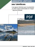 tema2-ecosistemaslnticos-100707193336-phpapp01
