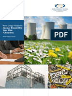 Nuclear Energy One Year After Fukushima