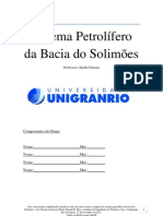 Sistema Petrolífero da Bacia do Solimões