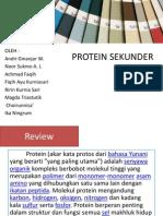 Protein Sekunder