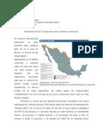 ___Articulo Ventanilla Unica, El Gran Paso Del Comercio Mexicano