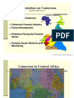 Cameroon p.ngalla
