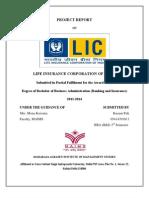 LIC Project Report
