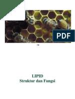 Lipids New