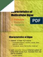 BIO1 - Multicellular Algae Part 1