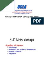 Dna Damage and Repair