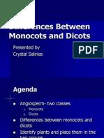 Monocotyledons and Dicotyledons