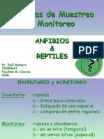 Muestreo de Anfibios y Reptiles