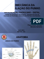 Cinesiologia - Aa. Radiulnar - Distal_ Punho